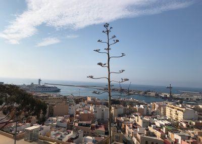 El Puerto desde la Alcazaba de Almería (3)