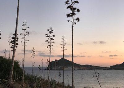 Playa de los Genoveses-Parque natural Cabo de Gata (1)